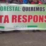 Random image: fruga-fraude-forestal-corunha-300x151